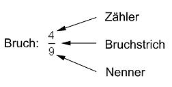 http://www.mathe-online.at/materialien/mone.denninger/files/Klasse2/C_Bruchzahlen/Bezeichnungen.png